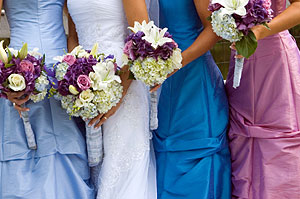 Bridesmaids gowns/Wedding Party Color Consultation